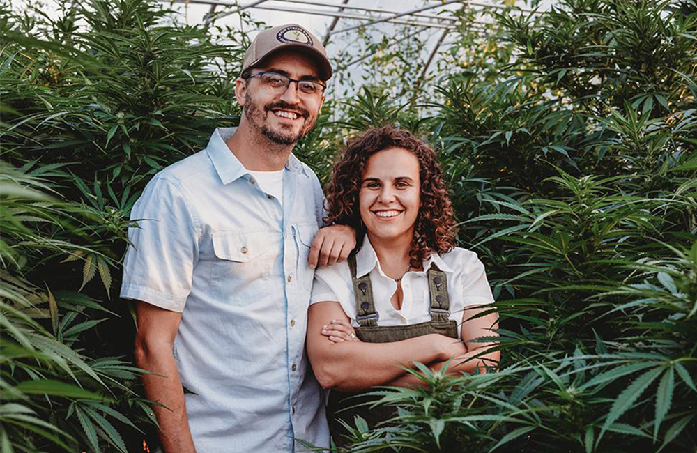 Co-founders of Head & Heal, Allan Gandelman and Karli Miller-Hornick, stand in among hemp plants in a greenhouse.